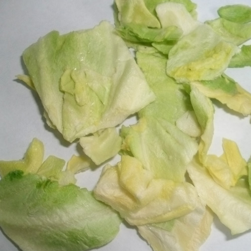 Freeze Dried Cabbage Slice